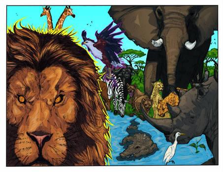 Zambian Wildlife