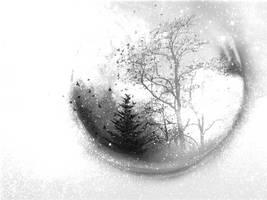 WinterForesttexture by shesguiltybydesign