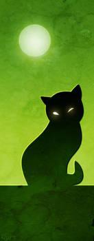 black magic cat