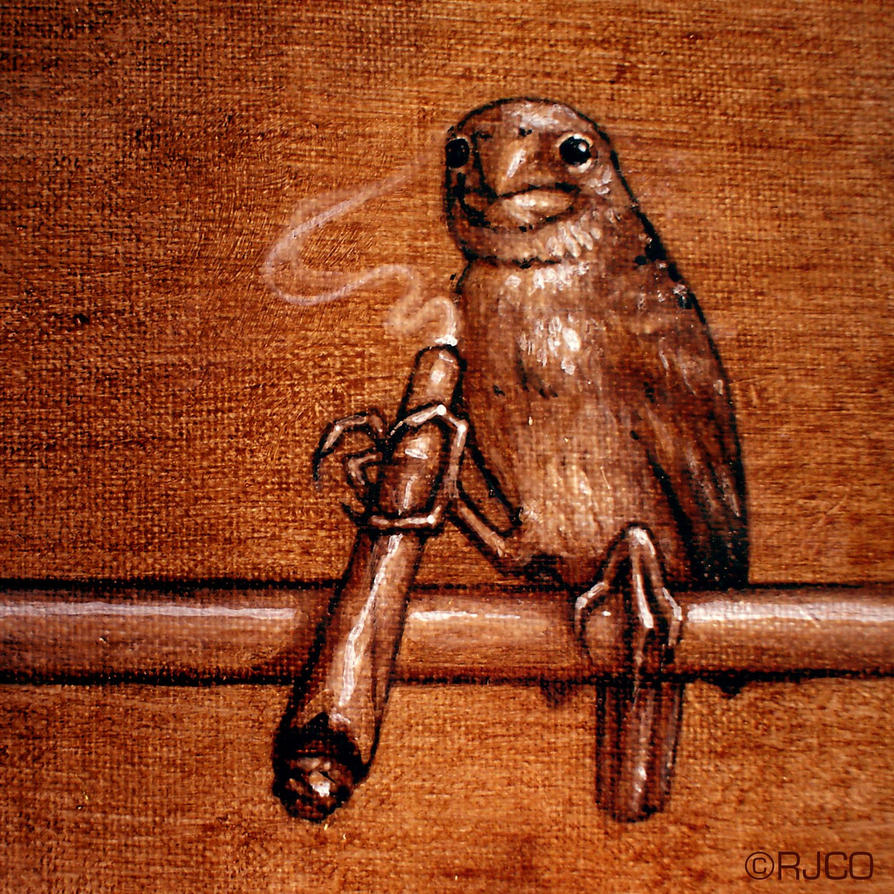 Lola the smoking bird by RogerStork