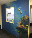 Coral mural by RogerStork