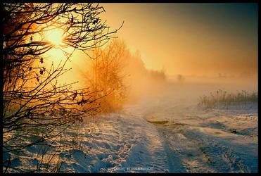 winters fog 3 by kubicki