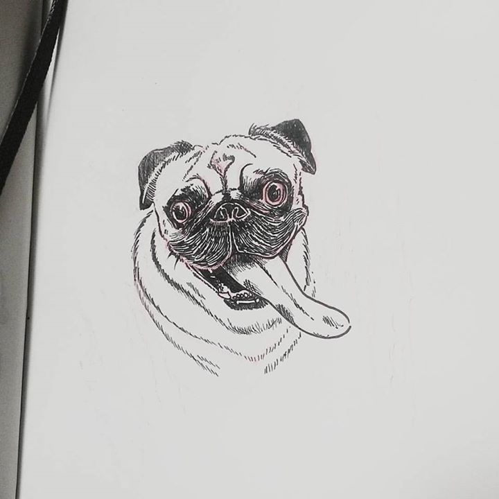 Gringo the Pug by natasian