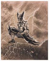 The Wolverine by dericthelegend