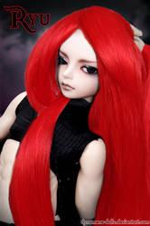 Ryu photomontage by Dynamene-Dolls