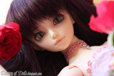 Rosy I by Dynamene-Dolls