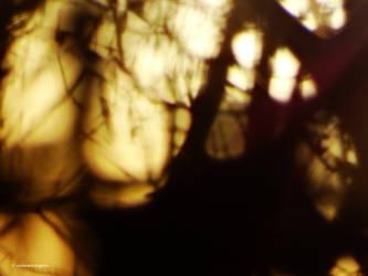 Svetlo013 by Azraelangelo-photo