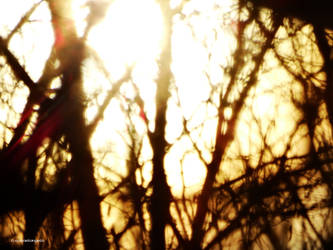 Svetlo012 by Azraelangelo-photo