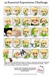 25 Essential Expressions ft. Toon Link