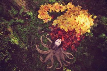 autumn by huhek