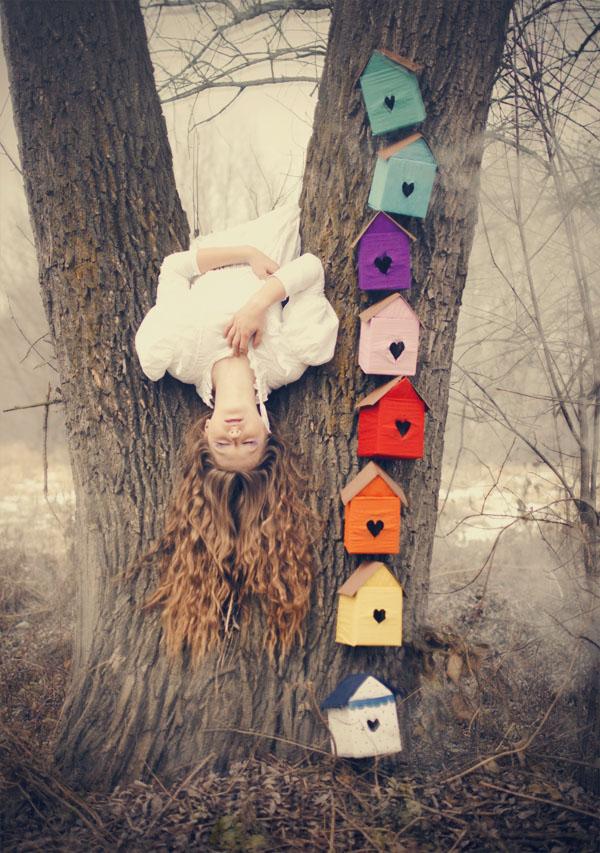 birdhouses by huhek