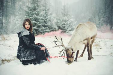 reindeer's story by huhek
