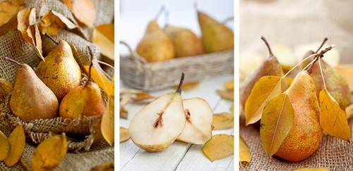 Pears by slyadnev
