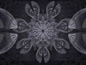 Grey fractal flower with dissected petals by coadykate