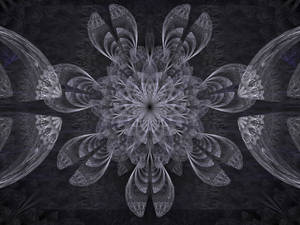 Grey fractal flower with dissected petals