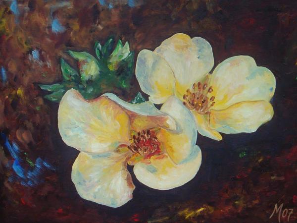 Wild Rose ... by MC-blue