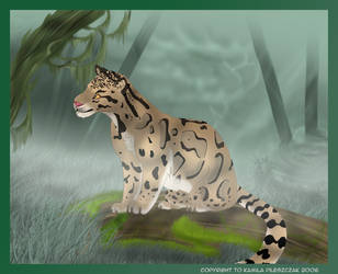 Clouded Leopard by Kamisia