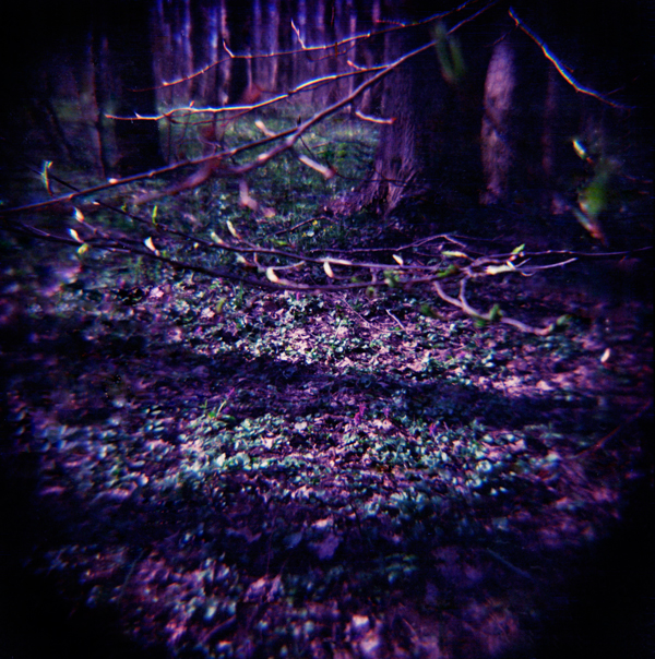 http://fc08.deviantart.net/fs70/f/2012/100/3/6/2_by_crocodilaroz-d4vpum9.jpg