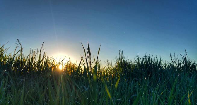 Early morning sunrise 3