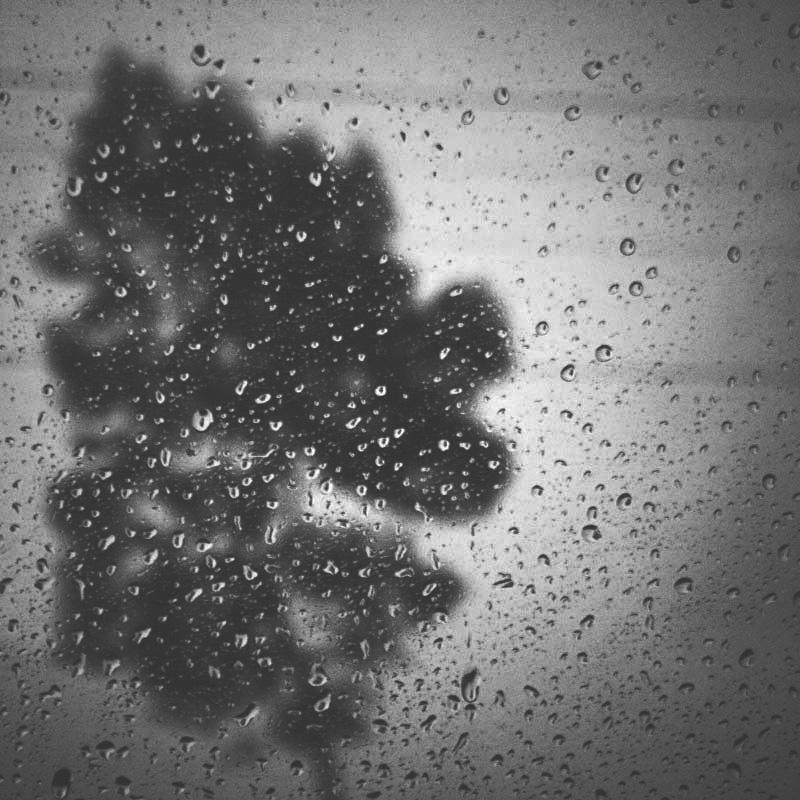friday rain by mahendrasaja