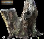 Tree Stump 002 - HB593200