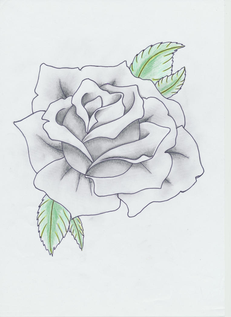 Black and Gray Rose Ta...