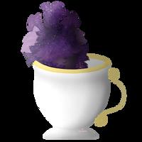CeCe in a teacup