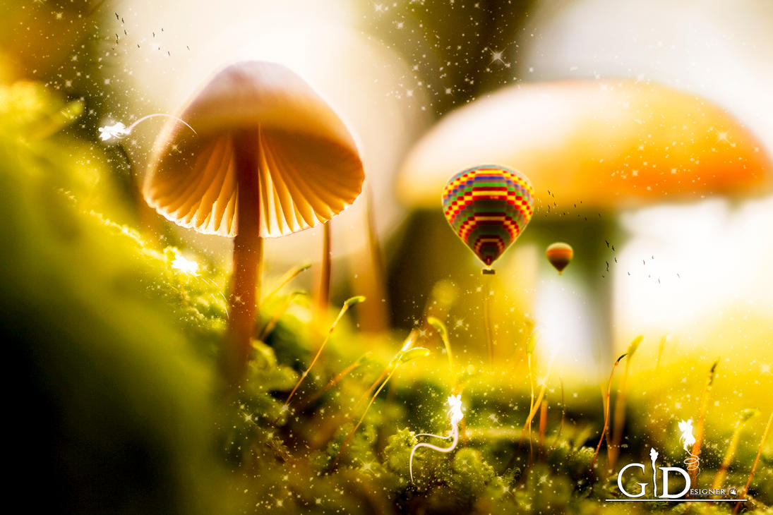 We are in Fairy Kingdom by GiacomoBoulanger