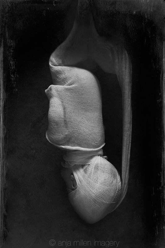cocoon by AnjaMillen