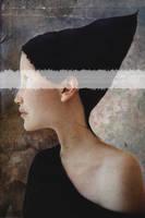 Hortensia by AnjaMillen