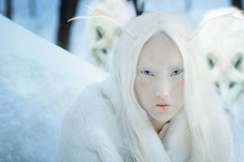 winter is coming by AnjaMillen