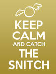 Keep Calm and Catch the Snitch