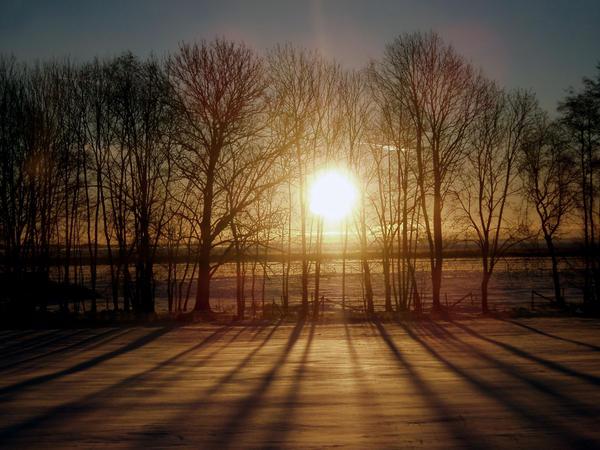 sunrise by Showeme