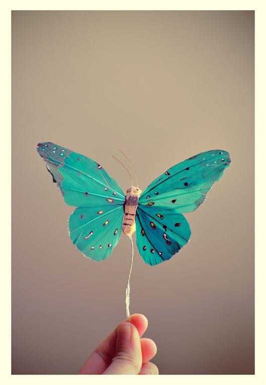 Flying towards you by GitaKawaii
