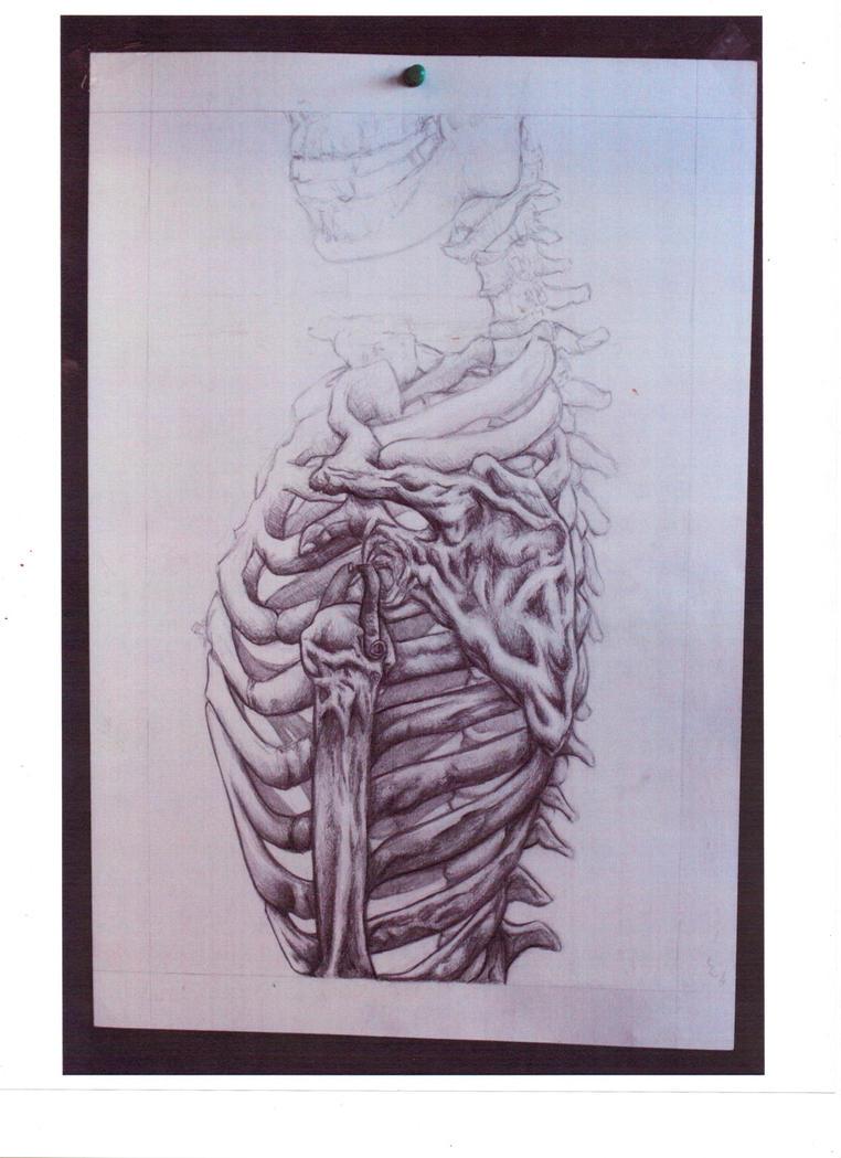 Skeleton by AprilTears