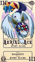 Character Card : Aerial Ace