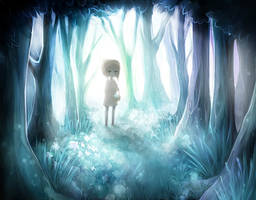the forest of light and shadow by shusical