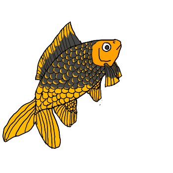 Common Goldfish (Gold/Gold/Black) with layered by KDVal