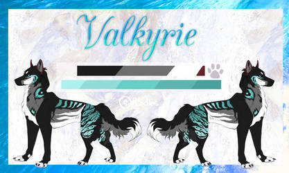 Valkyrie Reference 2019 by R0odles