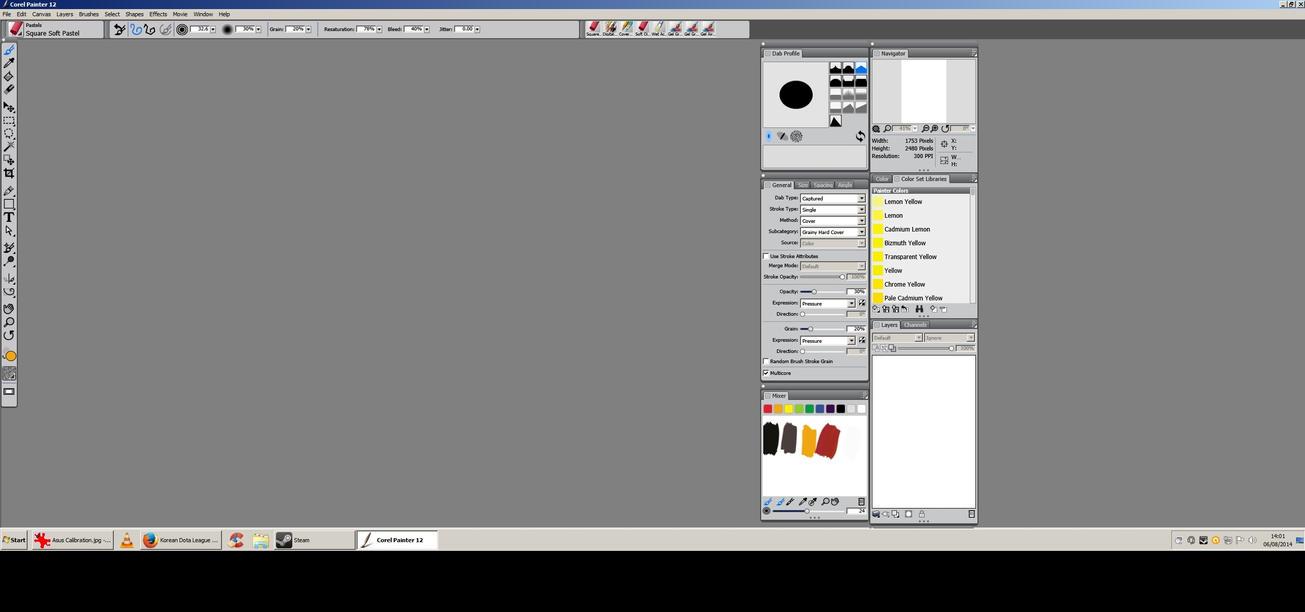 Asus PB298Q Corel Painter by ng4niceguy