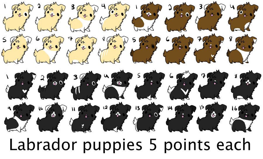 ...:::cheap labrador puppy adopts! 3 points:::... by echoing-adopts