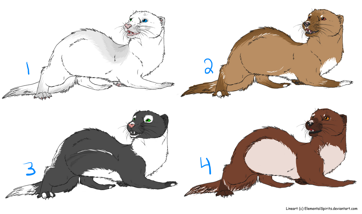ferret adoptables OPEN!!!! *edited!* 20 points eac by echoing-adopts