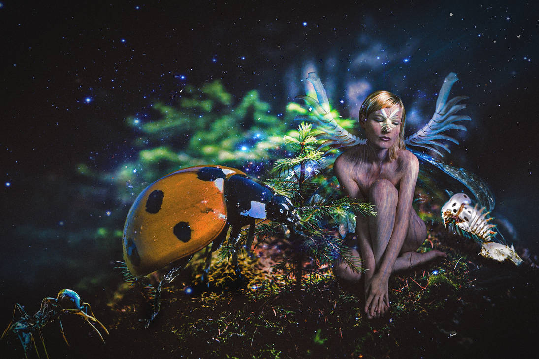 Insect Tinkerbell