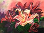 Stargazer Lilly by Amaryn-Philomena