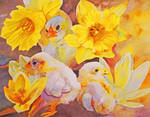 Yellow - Chicks, Crocuses, and Daffodils by Amaryn-Philomena