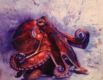 July - Octopus by Amaryn-Philomena