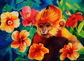 Baby Monkey in the Hibiscus