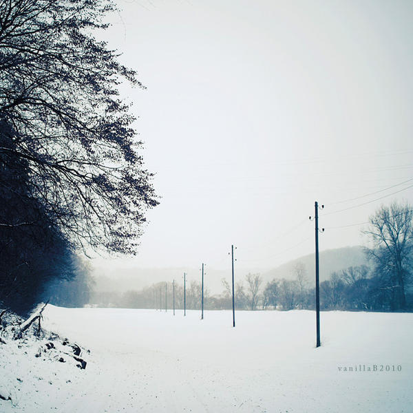 winter VI by vanerich