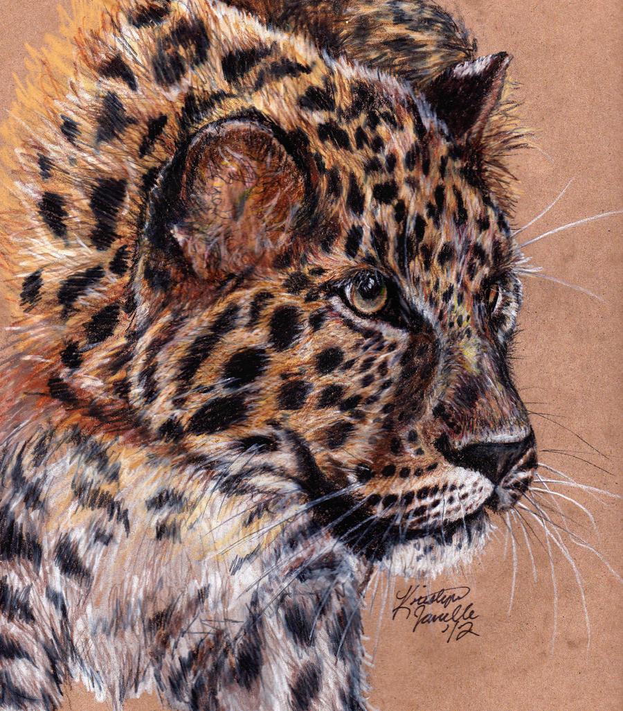 Amur Leopard by KristynJanelle