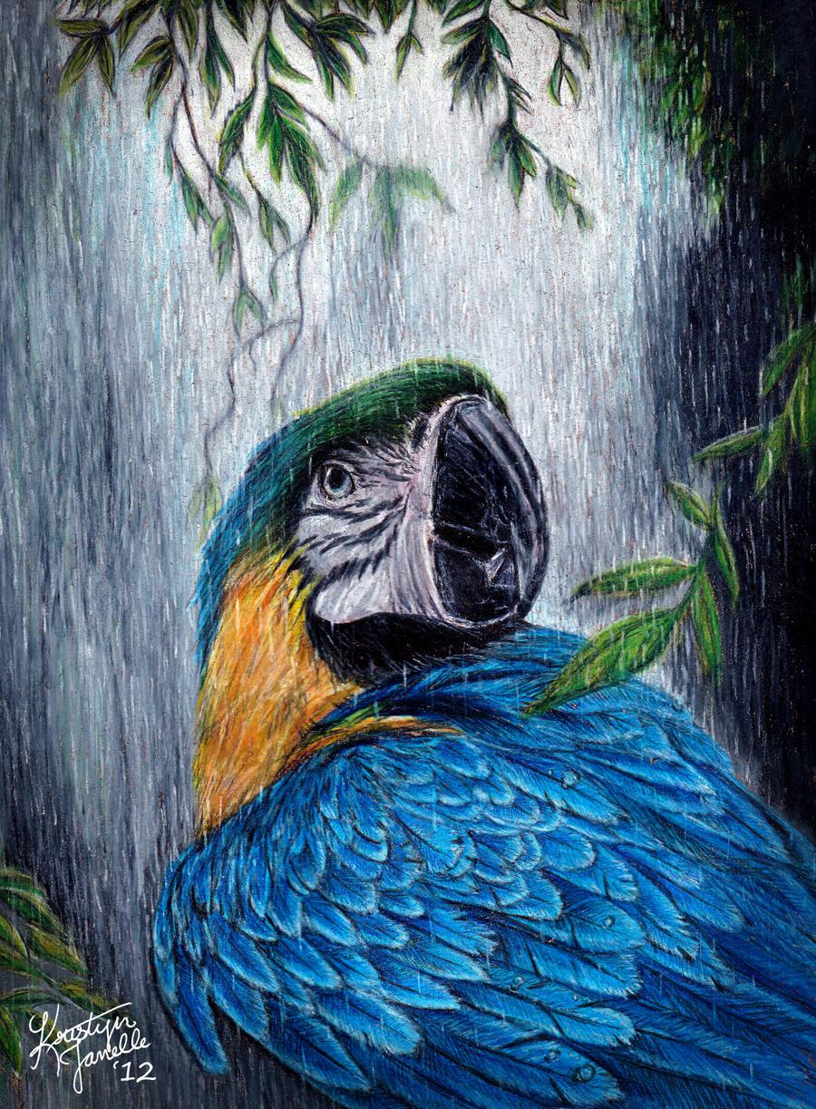 Under the Rain by KristynJanelle